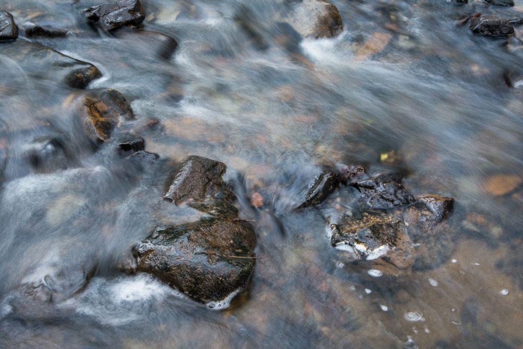 Wepre Brook in Wepre Park