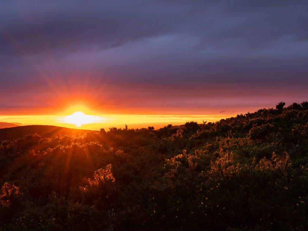 Moel-Y-Parc-Sunset
